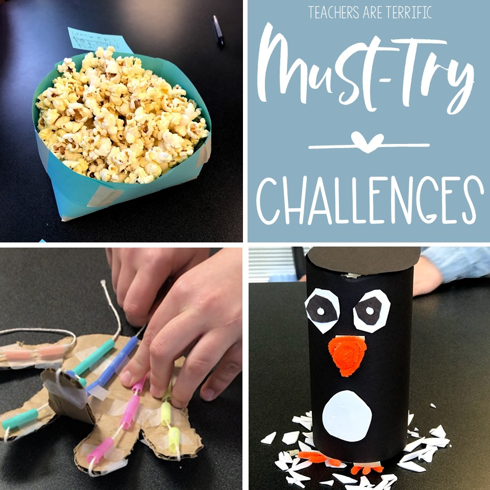 Ten STEM challenges that need to be featured in this blog post.  Reasons why everyone is a big challenge are included along with tips for using them!