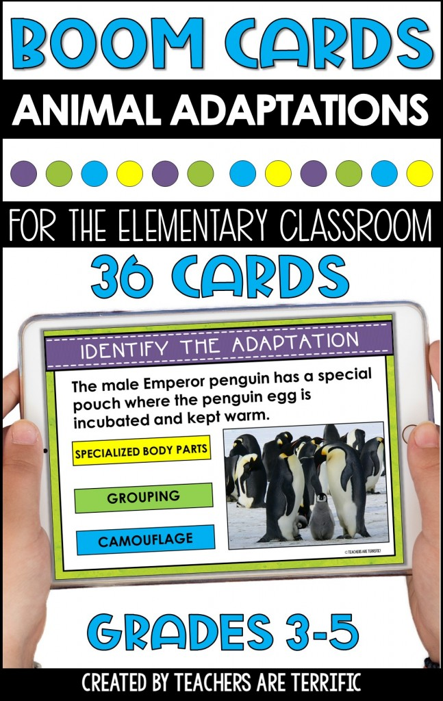 BOOM Task Cards are a perfect interactive practice with immediate feedback. This set features Animal Adaptations with photographs of animals showing different forms.
